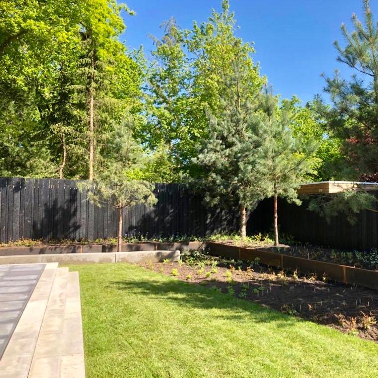 Burned Wood Douglas gefixeerd erfafscheiding open profiel in 3 verschillende breedtes tuin net aangeplant, gecombineerd met cortenstaal en naaldboom